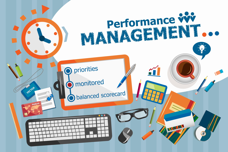 organizational performance pdf